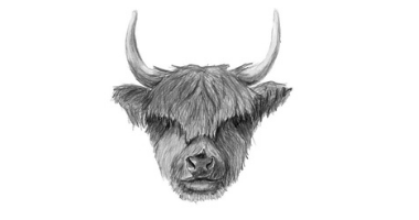 45min Chinese New Year of The Ox Sketching Lessons