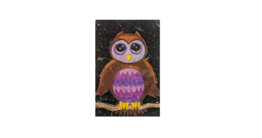 60min Drawing Lesson: Night Time Owl