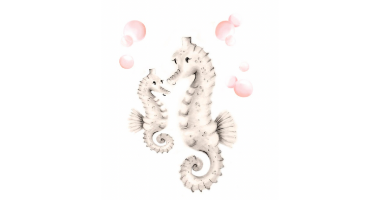 60min Drawing Lesson: Sea Horse Sketch