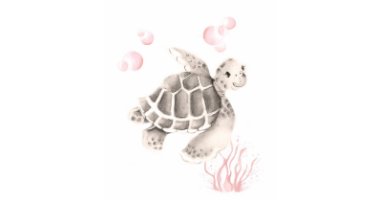 60min Drawing Lesson: Turtle Sketch